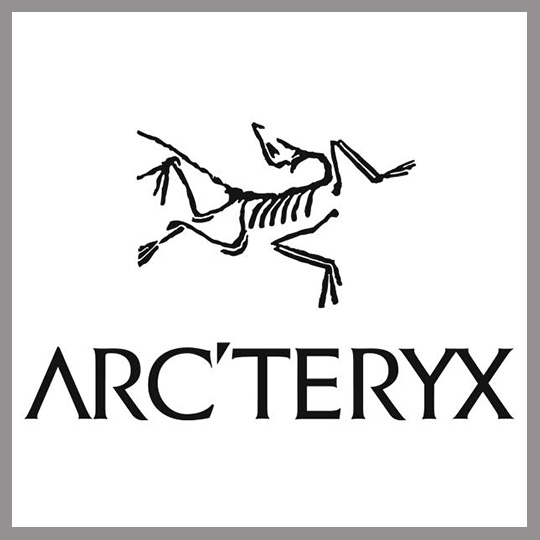 Arc'teryx Arc Yeryx product placement top 100 Brands in 2016 movies Concave Brand Tracking